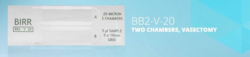 BB2-V-20