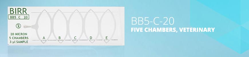 BB5-C-20